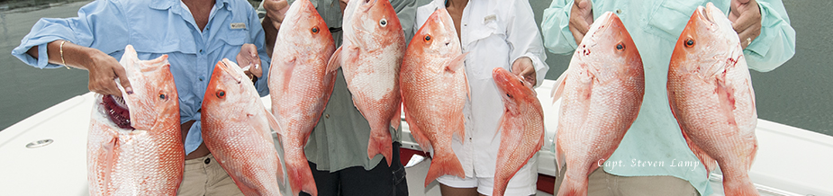 Red Snapper Key West